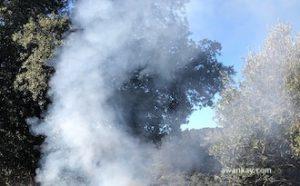 Fuego ancestral de Samhain